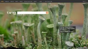 Buscador Bing, da Microsoft. (Foto: Reprodução/Microsoft)