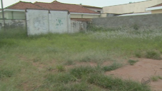 Prefeitura de Rio Claro, SP, estipula prazo para limpeza de terrenos baldios
