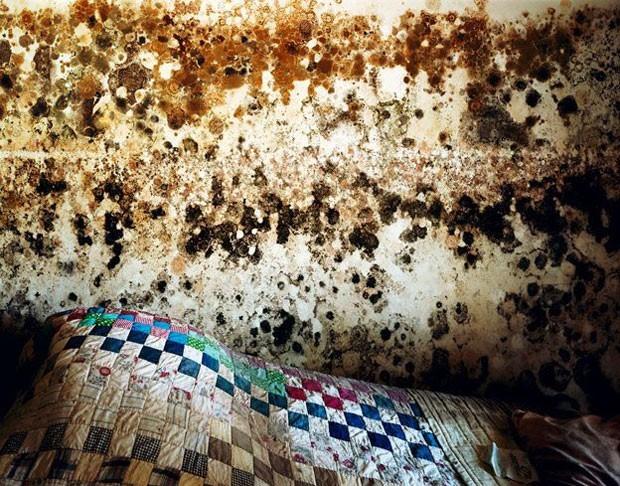 Outra foto de Wyatt Gallery que mostra a devastação do furacão Katrina nos Estados Unidos (Foto: Causa e Efeito/Wyatt Gallery)
