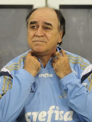 Marcelo Oliveira, Palmeiras (Foto: Marcos Ribolli)