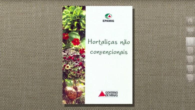 hortaliça-taioba-tv (Foto: Reprodução/TV Globo )