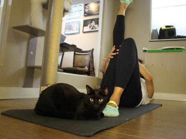 Participantes repetem movimentos de força, equilíbrio e flexibilidade (Foto: Camila Forti/G1)