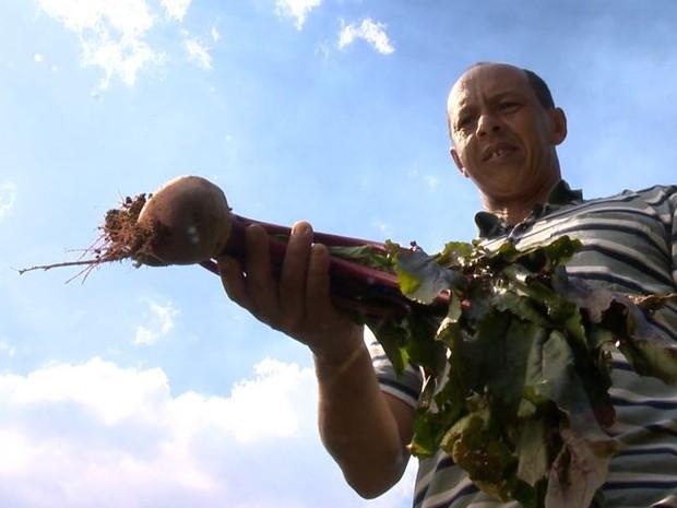 José planta vários alimentos na propriedade (Foto: Reprodução/ TV Gazeta)