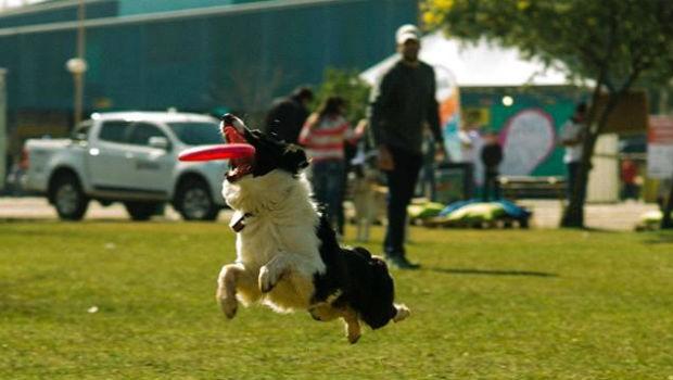 Venha se divertir com o seu Pet (Foto: Fumtur/ Rede Social)