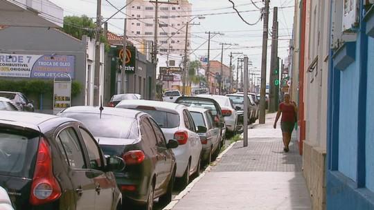 Estudo analisa árvores de Araraquara e aponta redução no plantio de mudas
