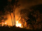 Incêndios por causa do tempo seco em MS ameaçam cerrado e cidades