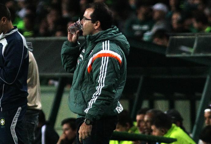 Enderson Moreira Fluminense (Foto: Nelson Peez / Fluminense)