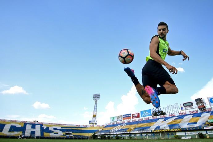 Rodrigo Pimpão Botafogo (Foto: Vitor Silva / SSpress / Botafogo)