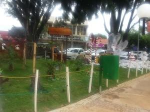 Praça na área central da cidade, com vista para a Câmara Municipal de Formosa (Foto: Raquel Morais/G1)
