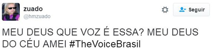 estreia web the voice  (Foto: the voice)