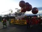 Manifestantes fazem em Brasília ato de apoio ao governo Dilma