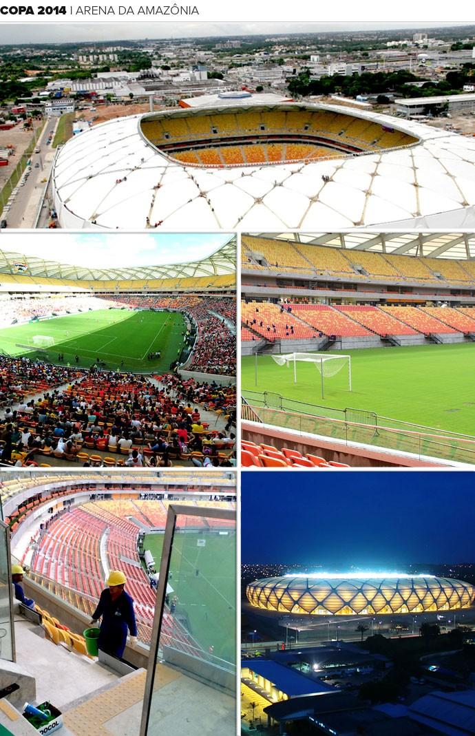 Mosaico estádio Arena da Amazônia Copa 2014 (Foto: Editoria de Arte)