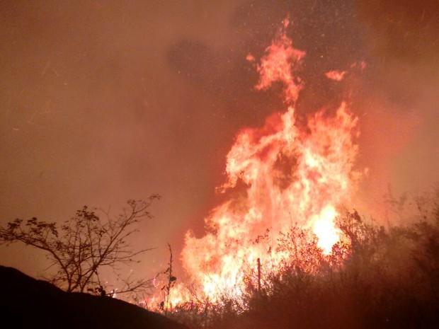 Incêndio florestal de grande proporção atingiu o Pico do Jabre, na Paraíba (Foto: Rafaela Gomes/TV Paraíba)