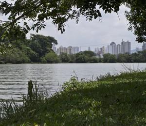 Parque Ecológico do Tietê, por onde passa o rio Tietê, entre Guarulhos e a Barragem da Penha. Imagem produzida para ilustrar a matéria sobre todo o percurso do Rio Tietê em São Paulo, desde sua nascente na cidade de Salesópolis (SP) (Foto: Marcos Camargo / Editora Globo.)