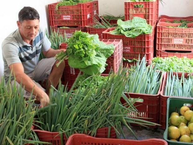 Produtores podem oferecer alimentos para a mereda escolar (Foto: Emater-RO/Divulgação)