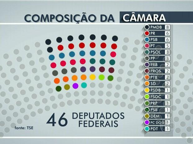 Veja a composição da Câmara com 46 deputados federais eleitos (Foto: Reprodução / TV Globo)