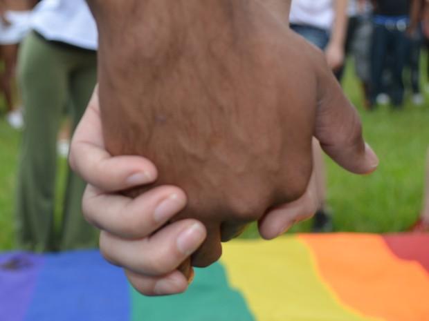 Parada LGBT de Piracicaba promove protestos anti-homofobia em Piracicaba (Foto: Thomaz Fernandes/G1)