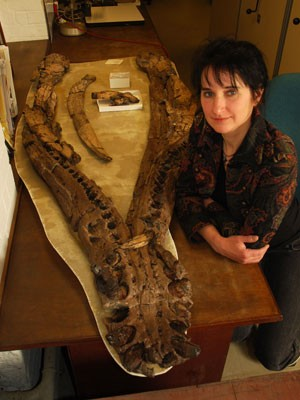 Judyth Sassoon, autora do estudo, com o fóssil estudado (Foto: Simon Powell/Universidade de Bristol/Divulgação)