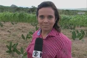 Silvia Torres (Foto: Reprodução)