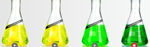 INFOGRÁFICO: Conheça todos os tipos de gasolina do mercado (Reprodução Shell)