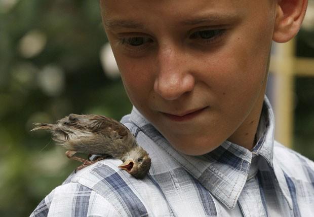"""Vadim Veligurov, de 12 anos, com um filhote de pássaro que se tornou seu """"melhor amigo"""" (Foto: Ilya Naymushin/Reuters)"""