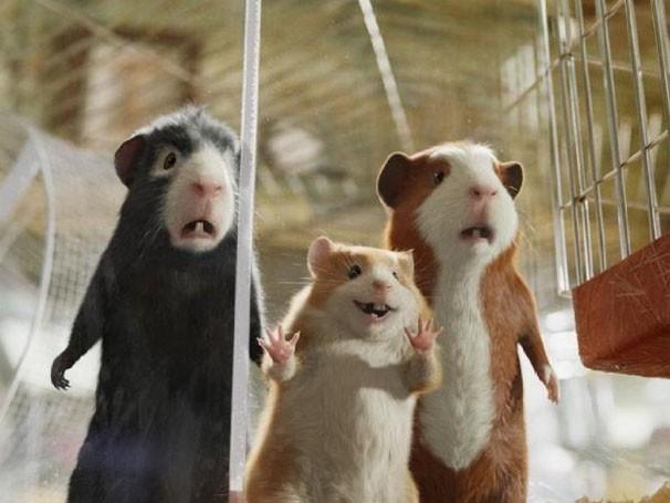 Porquinhos-da-índia são, na verdade, agentes secretos (Foto: divulgação)