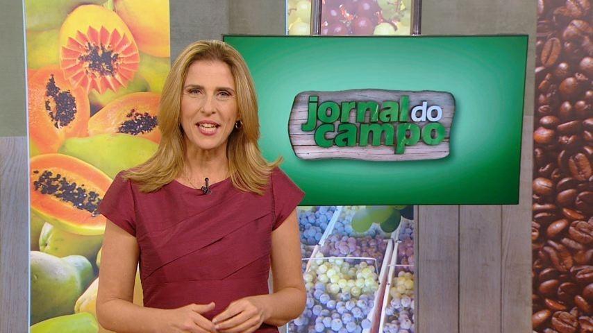 Claudia Gregório (Foto: Divulgação)