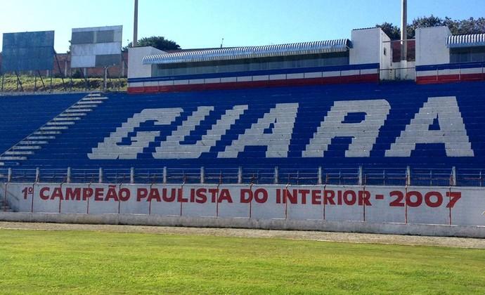 Pintura Arquibancada Dario Rodrigues Leite (Foto: Divulgação/ Guaratinguetá Futebol Ltda)