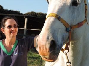 Veterinária Marília cuida do animal usado para reprodução (Foto: Caio Gomes Silveira/ G1)