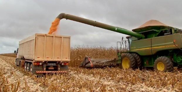 Colheita de milho em Mato Grosso (Foto: Reprodução/TVCA)