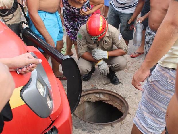 Bombeiros fizeram o resgate do animal, mas ele estava sem vida (Foto: João Cunha/Arquivo Pessoal)