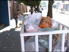Sem coleta, moradores de Rio Preto não sabem o que fazer com o lixo