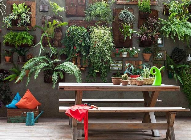 fotos jardim vertical : Plantas para Jardim Vertical: Dicas e Fotos! Blog Siote