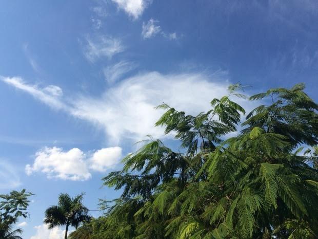 Previsão é de chuva em feriado prolongado (Foto: Isabela Cavalcante / G1 MS)