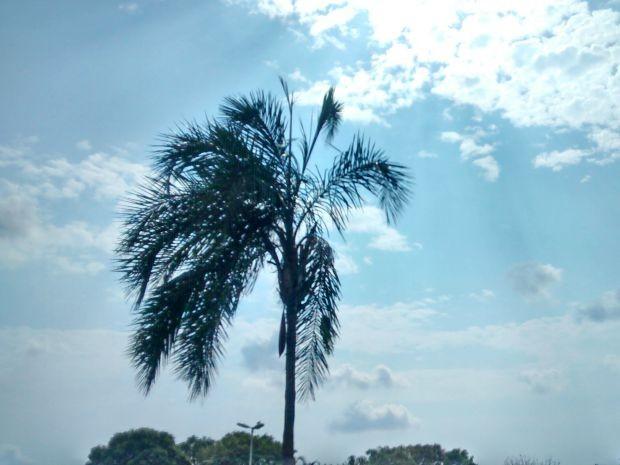Sol apareceu entre nuvens neste domingo (27) em Campo Grande (Foto: Juliene Katayama/G1 MS)