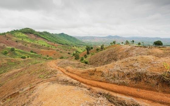 Terra com grandes trechos desgastados pela erosão. A perda de solo é um grande problema para a agricultura (Foto: Thinkstcok/Getty Images)