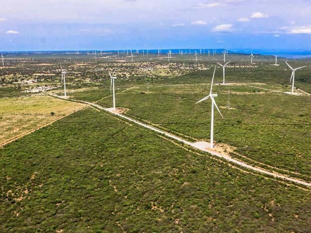 Parque eólico em Cerro Corá  (Foto: Canindé Soares)