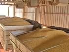 Transporte da safra de grãos do Centro-Oeste está mais caro