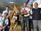 Competição em feira na França elege mais 'bela vaca'