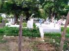 Moradores pagam para cercar  cemitério 'esconderijo de bandidos'
