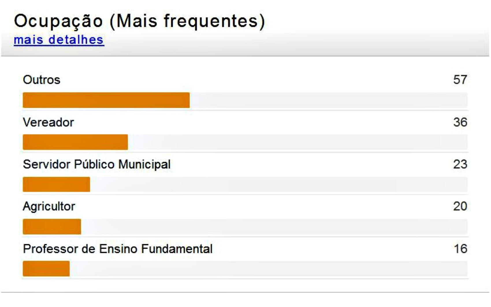 Estatísticas do TSE mostram as profissões mais frequentes dos candidatos (Foto: Reprodução/TSE)