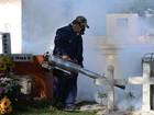 'Zika deve se espalhar por todo o contintente americano', adverte OMS