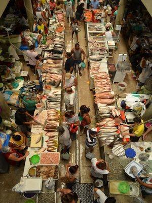 Mercado Municipal Albano Franco (pescados) Aracaju 2 (Foto: Marina Fontenele/G1)