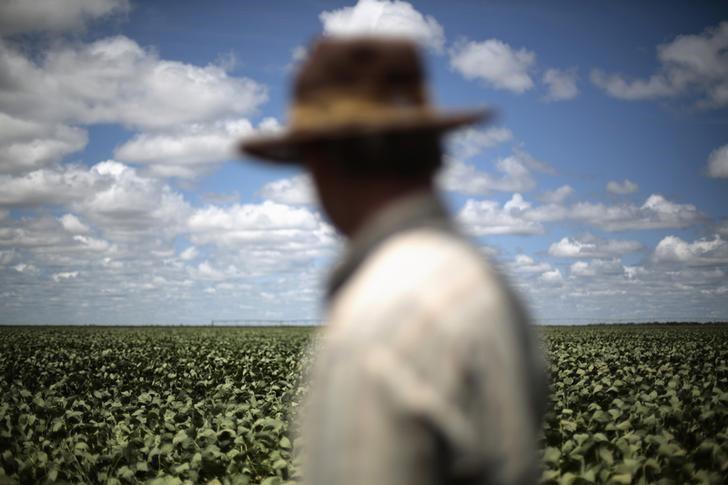 Agronegócio sente crise e perde empregos, produção e receita
