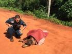 Homem é encontrado ferido às margem de córrego na capital de MS