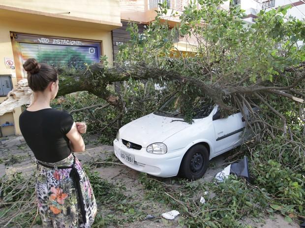 Árvores caíram sobre carros no temporal de Porto Alegre  (Foto: Jefferson Botega / Agência RBS )