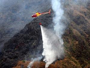 Fogo deve ser erradicado nesta quarta-feira  (Foto: Willian Tardelli/Divulgação)