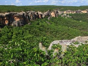 CDB prevê proteção de 17% de áreas terrestres (Foto: Arquivo MMA / Eraldo Peres)