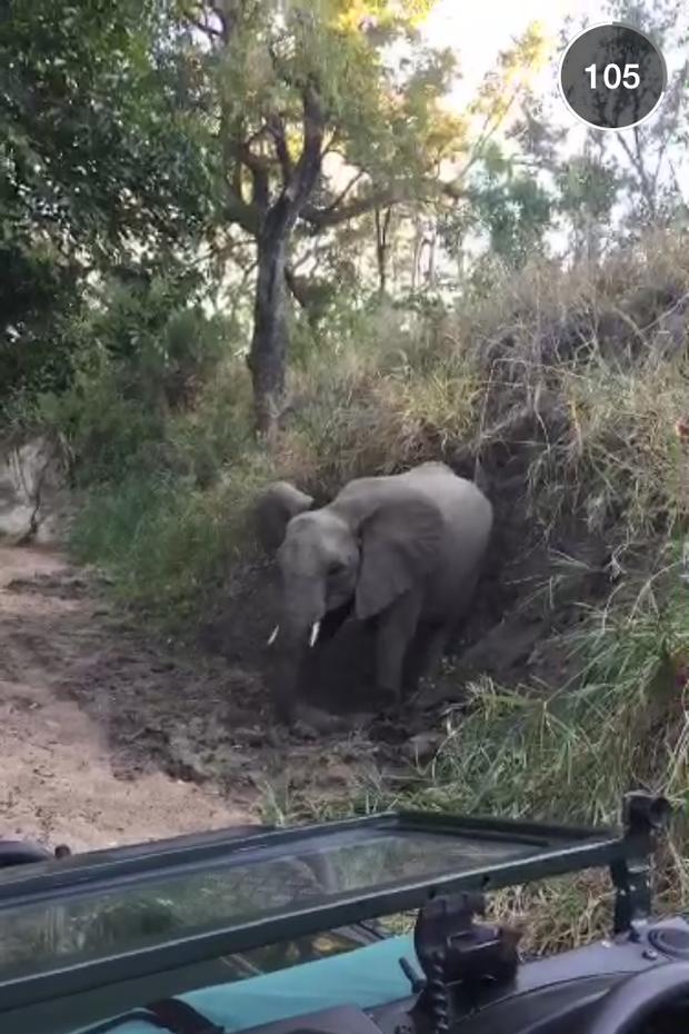 Giovanna Ewbank mostra viagem a África do Sul (Foto: Reprodução/ Snapchat)