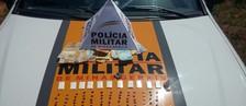 Três presos com ecstasy, cocaína e maconha (Polícia Militar/Divulgação)